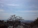 長峰霊園.jpg